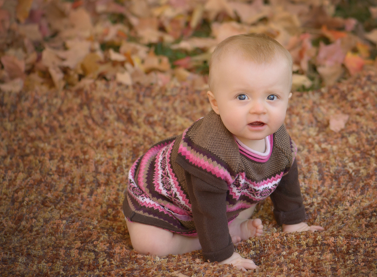 fall baby crawling sweater leaves photos