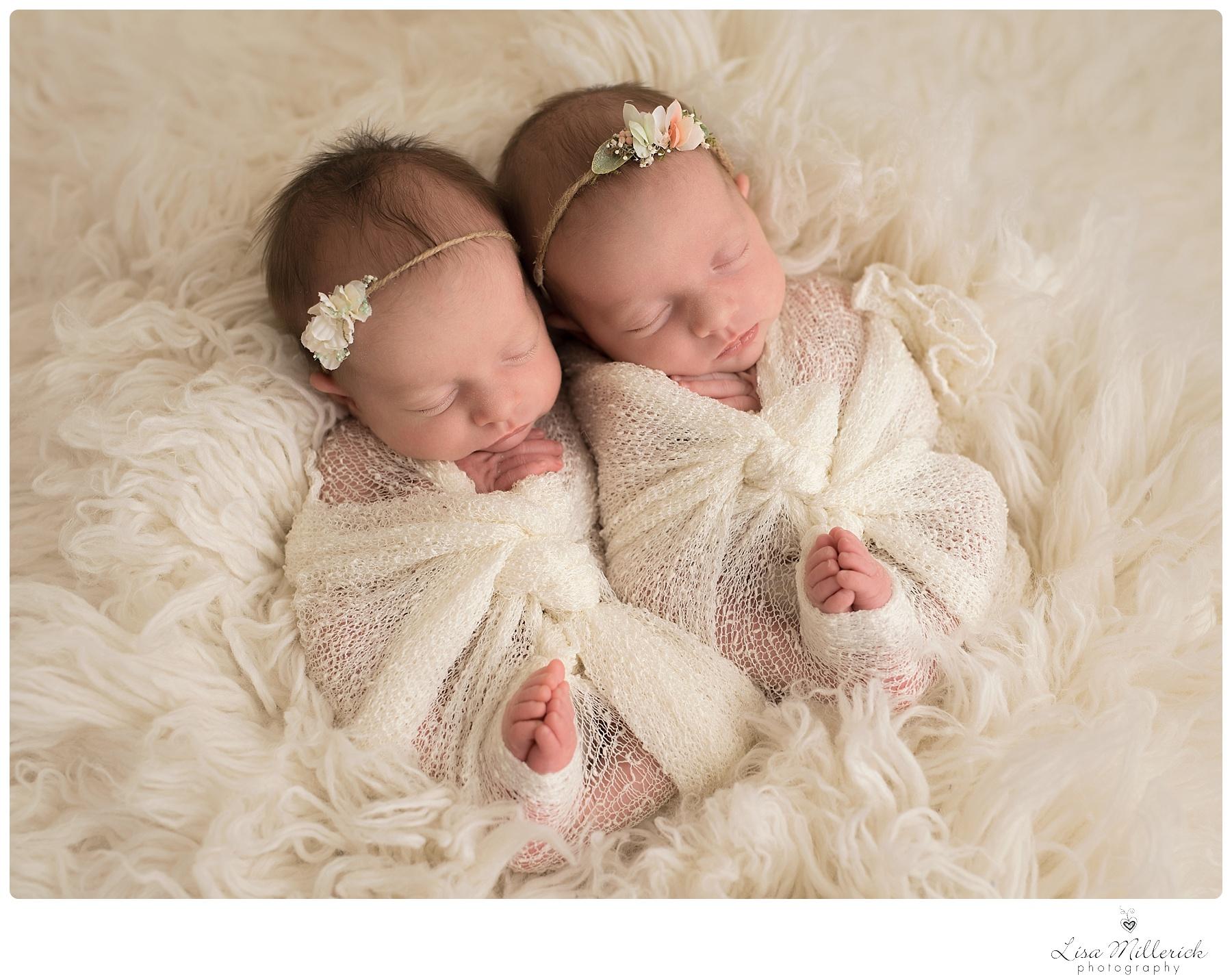 newborn baby girl twins newborn and family photographer